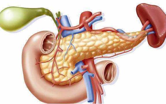 克里克研究所:蛋白质可以为胰腺癌提供治疗靶点