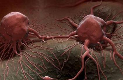 近距离放射疗法被证明对治疗皮肤癌有效