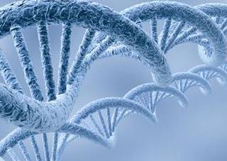 bempegaldesleukin (NKTR-214)联合Opdivo疗法使PD-L1低表达恶性黑色素瘤穿着患者重燃希望