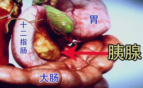 食道癌的治疗方法介绍