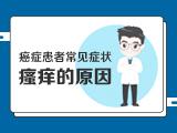 【癌症患者常见症状】——3瘙痒的原因