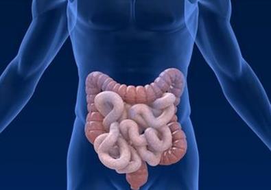 大肠癌的检查与诊断