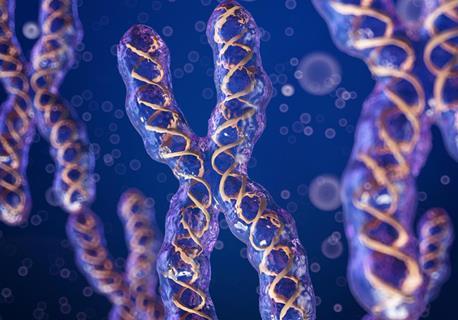 癌症染色体臂的得失对不同癌症的治疗和结果更有利