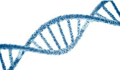 病毒DNA测序如何为下一代癌症疫苗打下基础