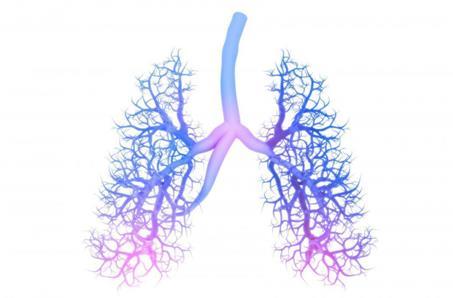 小细胞肺癌研究总结报告指出了进展和挑战