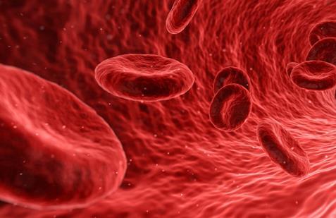 研究者发现在白血病发生前对其进行干预的方法