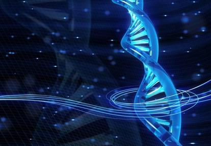 影响子宫内膜癌的危险因素