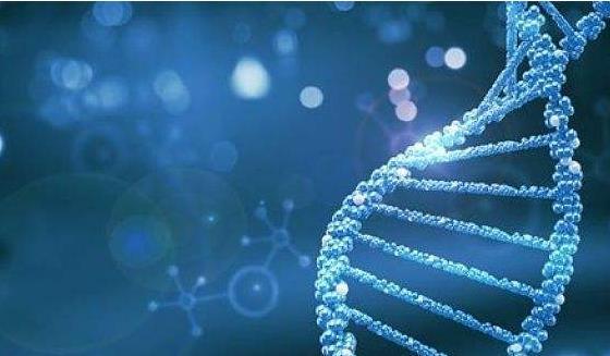 肿瘤患者为什么要做基因检测?这是我听过最好的解答