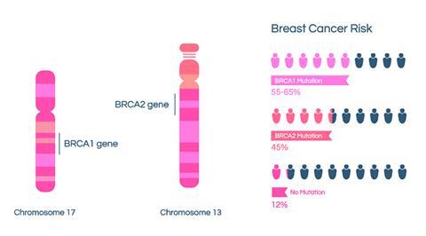 研究人员建议所有66岁以下患有乳腺癌的女性应当接受胚系基因检测
