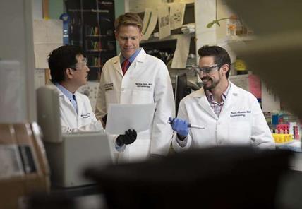 华盛顿大学医学院研究人员发现促进结直肠癌患者放疗效果的重要蛋白