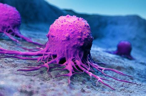 改善光动力疗法治疗癌症的新型化合物