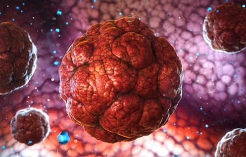 生物学家找到解决肿瘤抗药性的新方法