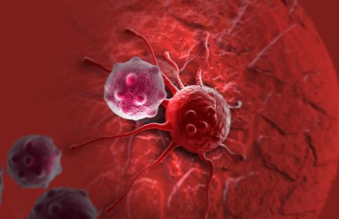OncoMX知识库可改善癌症生物标志物的探索和研究