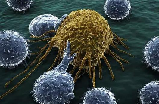 超快速重复染色脱色细胞样品以进行肿瘤诊断