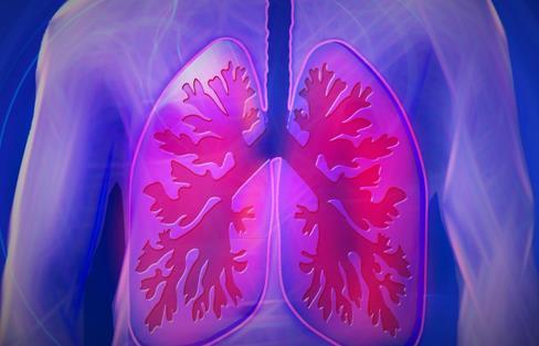 研究人员追踪了肺部肿瘤行为的基因组学