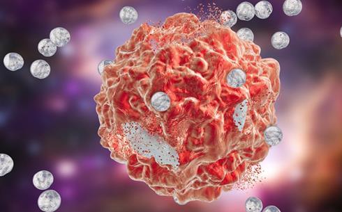 研究人员揭示了肿瘤细胞如何应对营养缺乏