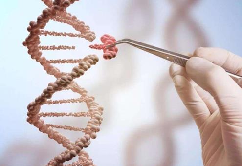 基因研究推动神经胶质瘤研究的发展