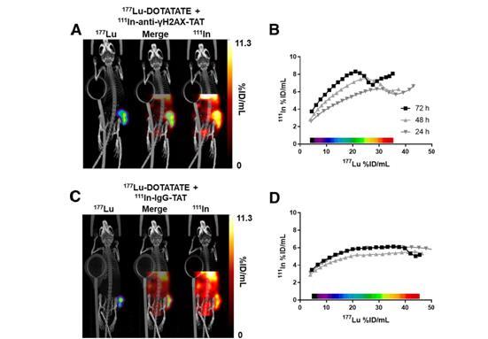 分子影像技术可深入了解神经内分泌肿瘤患者的治疗结果