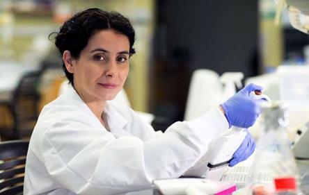 饮食,肠道微生物影响癌症治疗的有效性