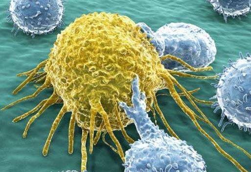 免疫疗法avelumab可改善晚期尿路上皮癌一线化疗后的总体生存率