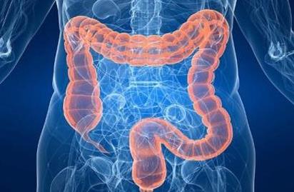 腹腔疾病患者罹患小肠癌的风险增加