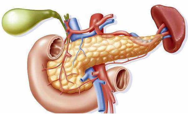 新药可以改善胰腺癌患者的预期寿命和质量