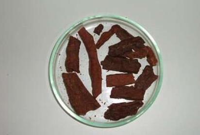 巴西红蜂胶中鉴定出抗癌物质