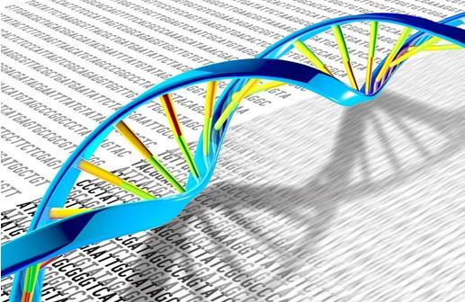 突破性研究:通过停止DNA修复来治疗癌症