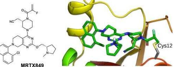关于KRAS基因突变的靶向抑制剂研究有所突破