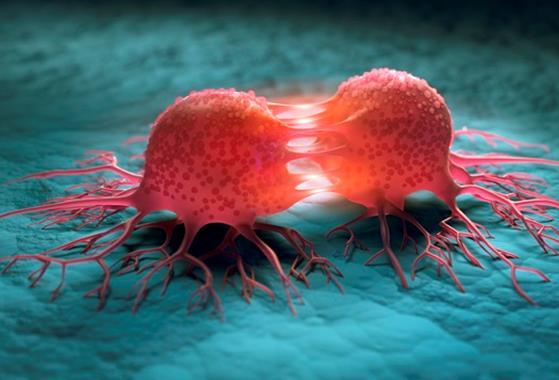 延迟接受治疗会提升癌症患者死亡率