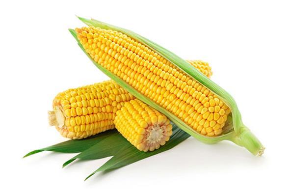 玉米是防癌食物吗